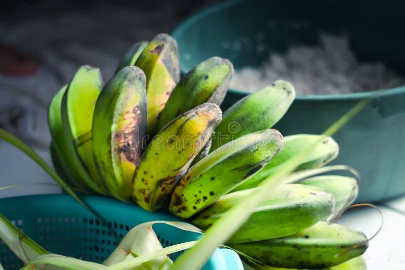 Bananas for frying stock photos