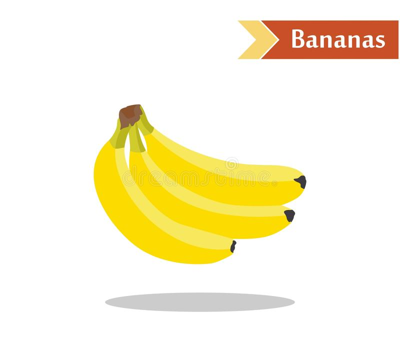 Bananas. Illustration with juicy and tasty fruits - bananas vector illustration