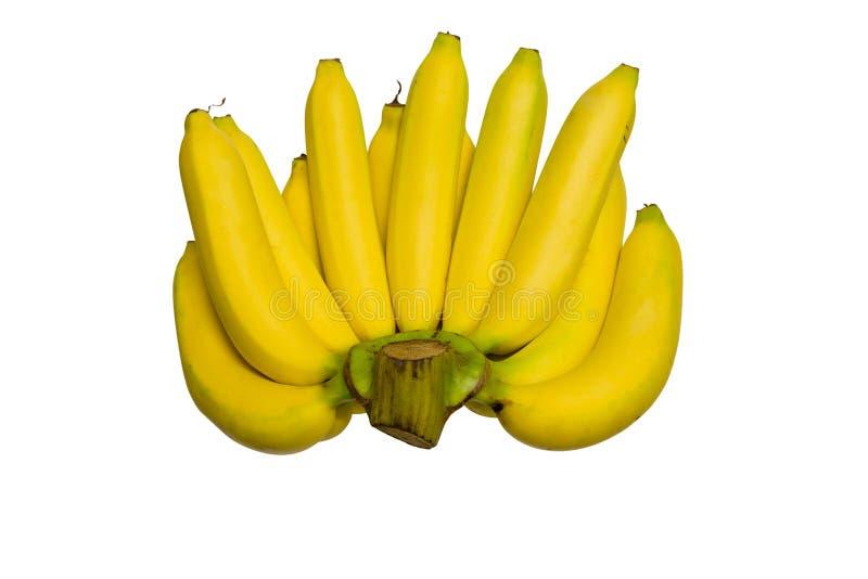 Download Bananas isolated on white stock image. Image of banana - 39507347