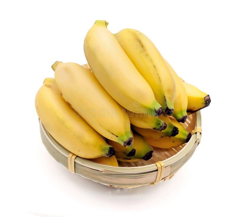 Bananas isolated on the white background royalty free stock photo