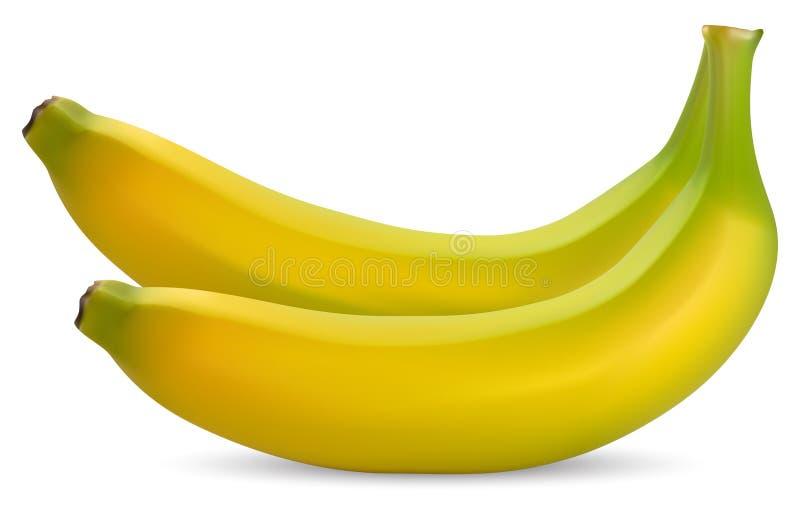 Bananas maduras ilustração do vetor