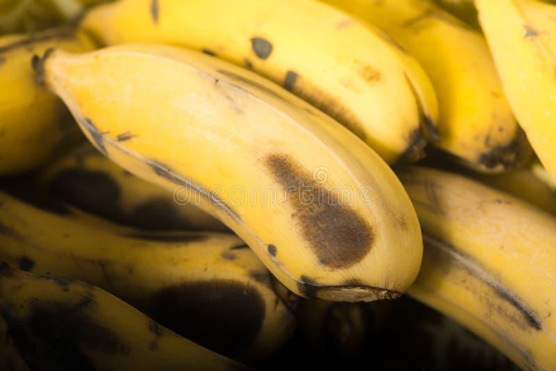 Bananas maduras Banana com os pontos escuros com sombra na cesta Fruta amarela Foco seletivo disparado close up imagem de stock