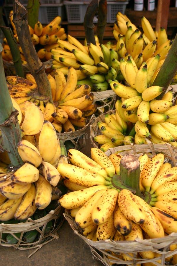 Bananas at the market royalty free stock photo