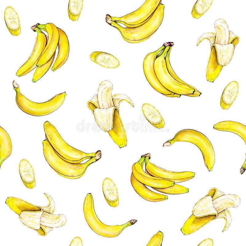 Bananas no fundo branco Teste padrão sem emenda Ilustração da aguarela Fruta tropical Handwork ilustração stock
