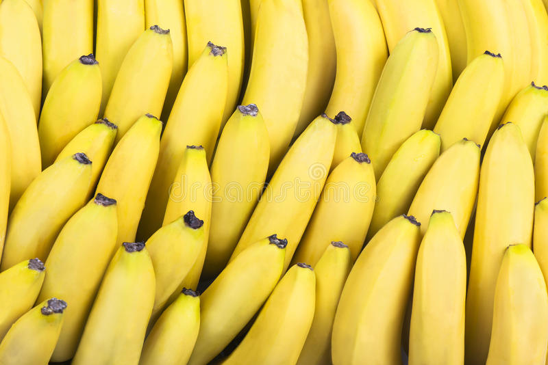 Bananas in rows royalty free stock images