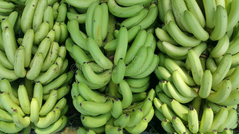 Bananas in the rural market in India. Bananas are one of the most widely consumed fruits in the world for good reason. Eating them could help lower blood stock images