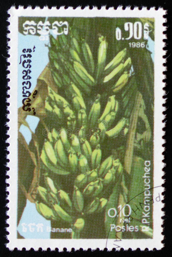 Bananas a series of images `Exotic fruits` circa 1986. MOSCOW, RUSSIA - FEBRUARY 19, 2017: A stamp printed in Kampuchea shows Bananas a series of images `Exotic royalty free stock images