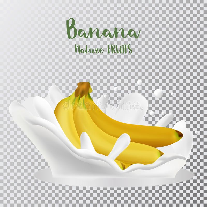Bananas with a splash of milk. 3d realistic vector royalty free illustration