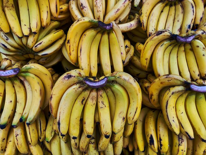 Bananas Street Market Mysore India, Indiase Banaan, Zuid-Indiase bananenvariëteit stock afbeeldingen