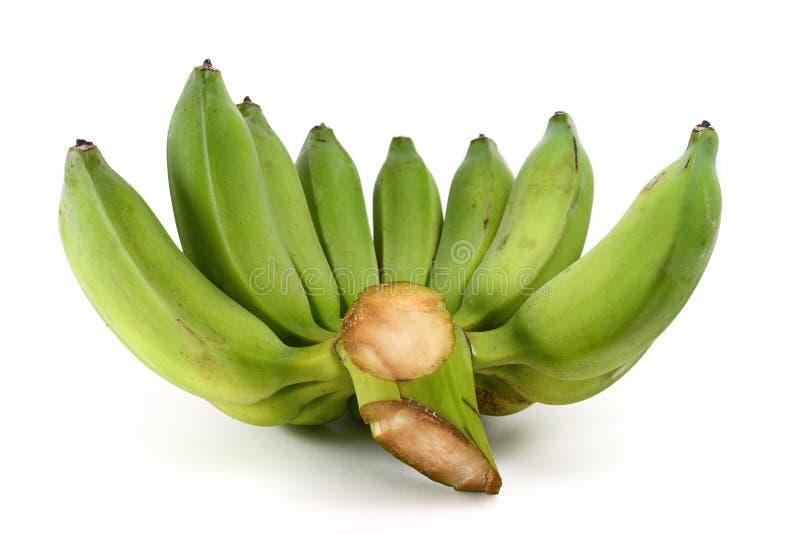 Bananas verdes foto de stock