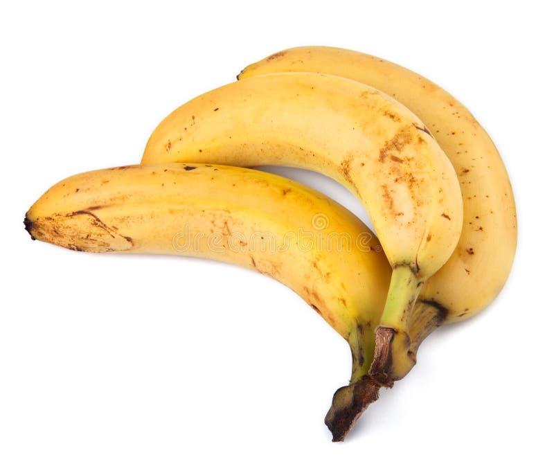 Bananas on white royalty free stock photos