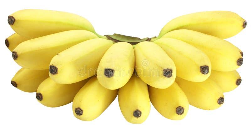 Banane images stock