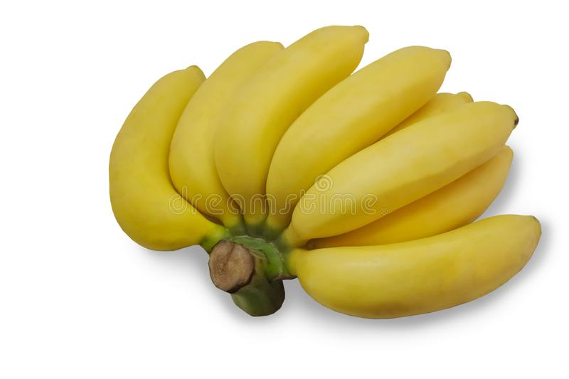 Banane de Cavendish photo libre de droits
