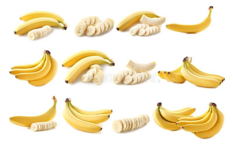 Banane dolci immagine stock