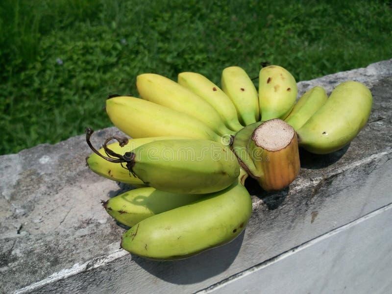 Banane fraîche image libre de droits
