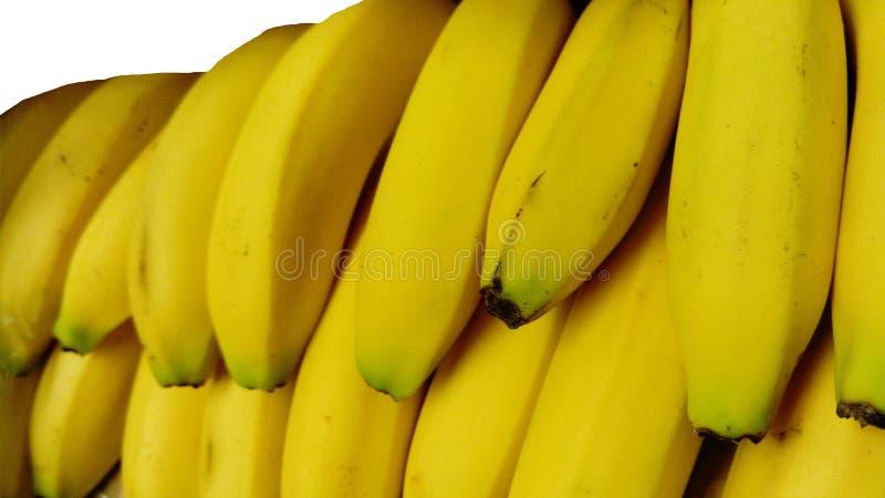 Banane owoc odosobnionej natury tropikalny żółty tło Kolor, zakończenie obraz royalty free