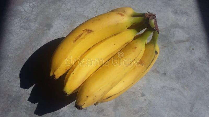Banane platano großer Schatten stockbild