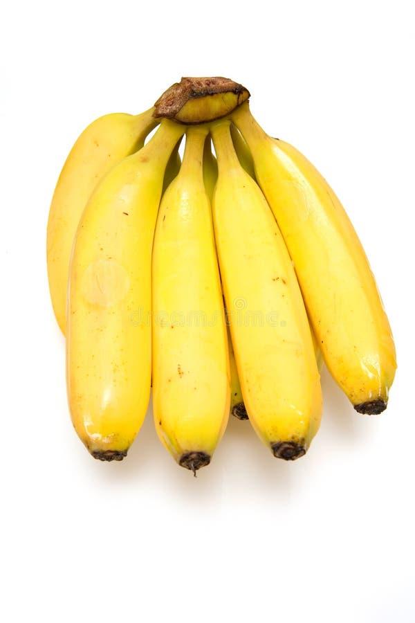 Banane su una priorità bassa bianca dello studio. fotografie stock libere da diritti