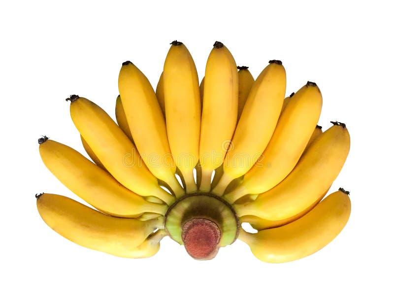 Bananen stock afbeelding