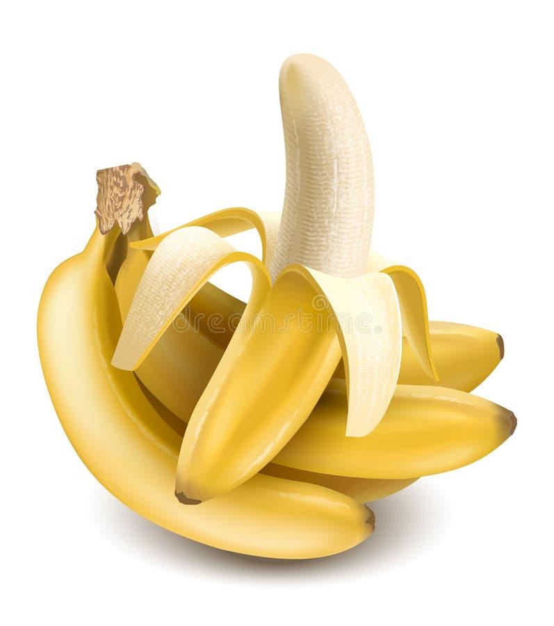 Bananen vektor abbildung