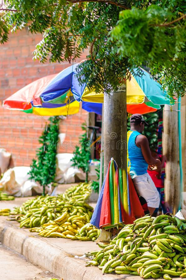 Bananen auf Straßenmarkt in Cartagena - Kolumbien lizenzfreies stockbild