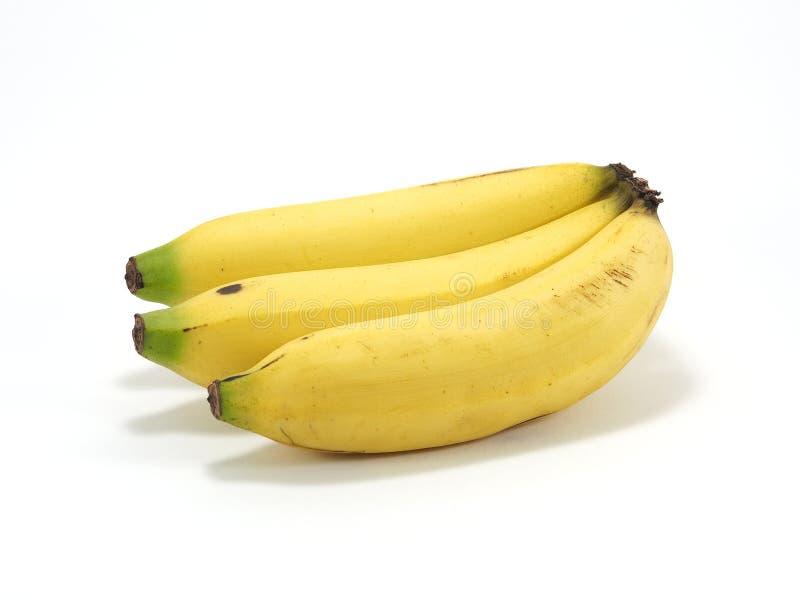 Bananen auf weißem Hintergrund stockfotos