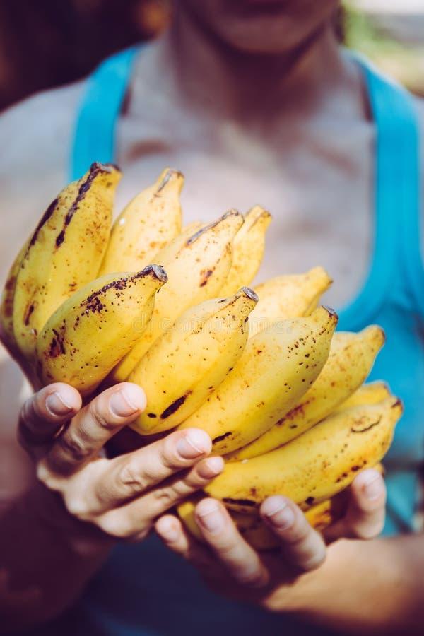 Bananen in der Hand, Nahaufnahme lizenzfreies stockfoto