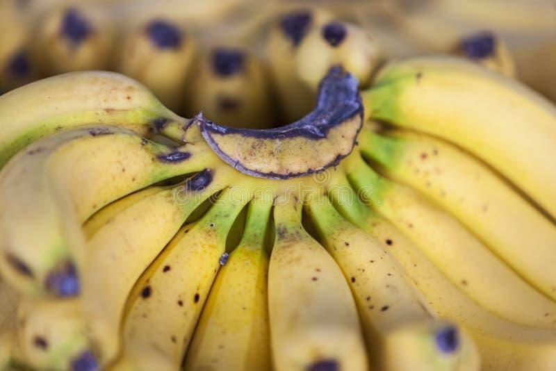 Bananen op de markt stock foto's