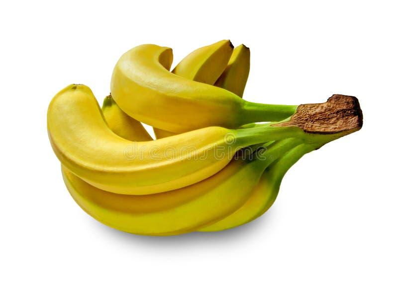 Bananen in studio royalty-vrije stock afbeeldingen