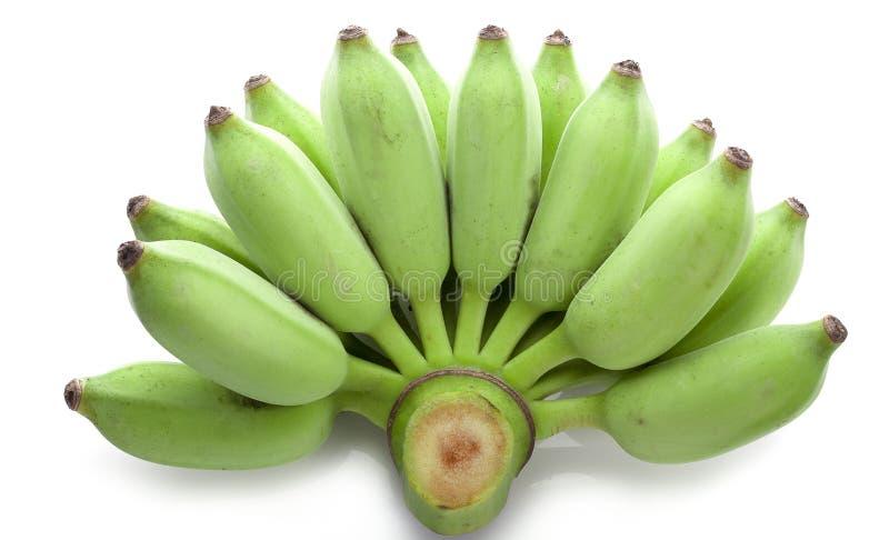 Bananen, thailändische angebaute Banane, thailändische Bananen an auf weißem backgro stockfotografie