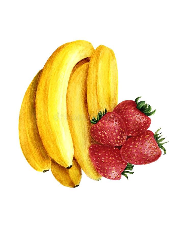 Bananen- und Erdbeeraquarellillustration lokalisiert auf einem weißen Hintergrund stockbild