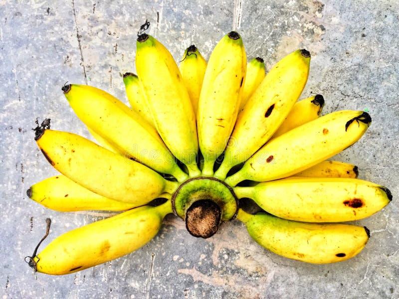 Bananenbündel auf Boden lizenzfreie stockbilder