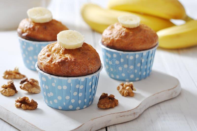 Bananenmuffins im Kasten des kleinen Kuchens des blauen Papiers lizenzfreie stockfotografie