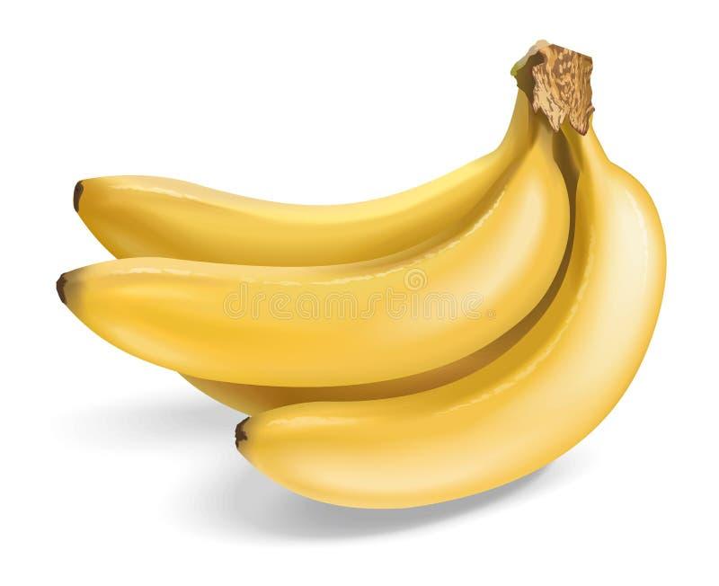 Bananer stock illustrationer