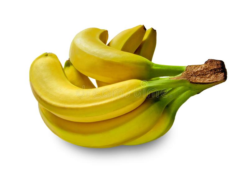 Bananer i studio royaltyfria bilder