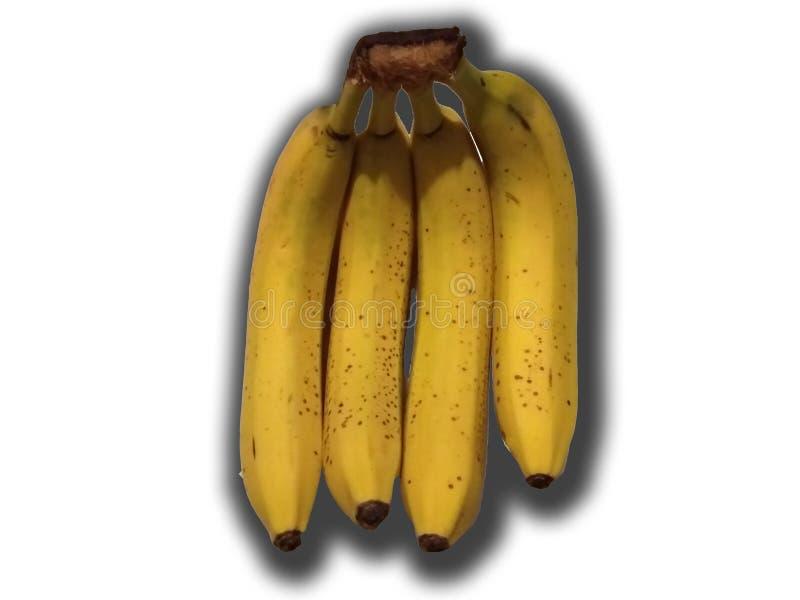 Bananer på vit royaltyfria foton