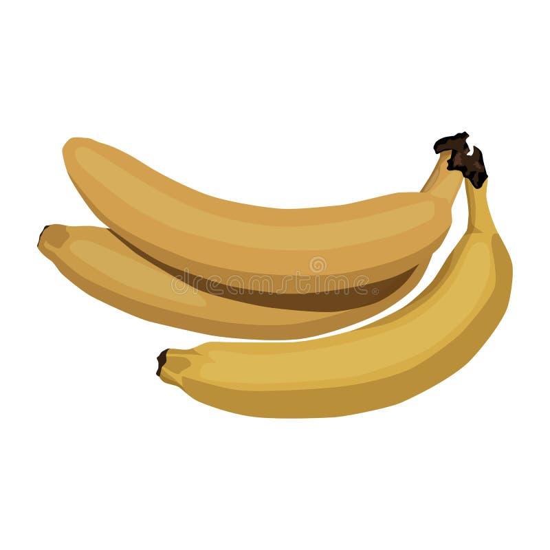 bananer samlar ihop yellow tropisk frukt vitaminfrukost stock illustrationer