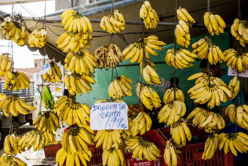 Bananer som ska säljas på Bahia arkivbild