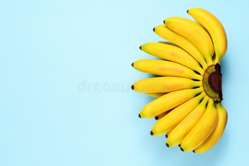 Bananes de bébé sur le bleu photo stock