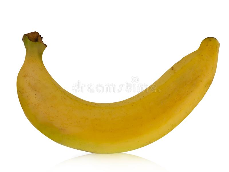 Bananes de Cavendish sur le fond blanc photos stock