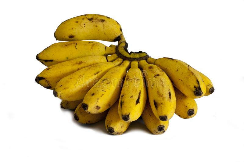Bananes de Madame Finger photographie stock libre de droits
