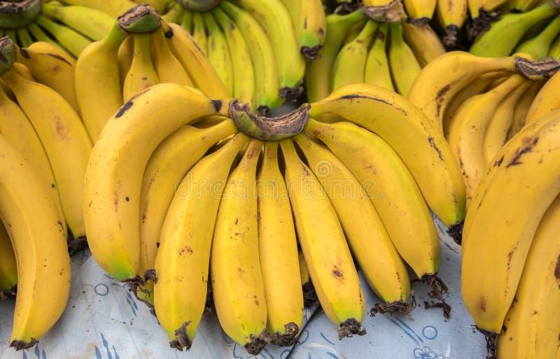 Bananes fraîches au marché local de ville photographie stock libre de droits