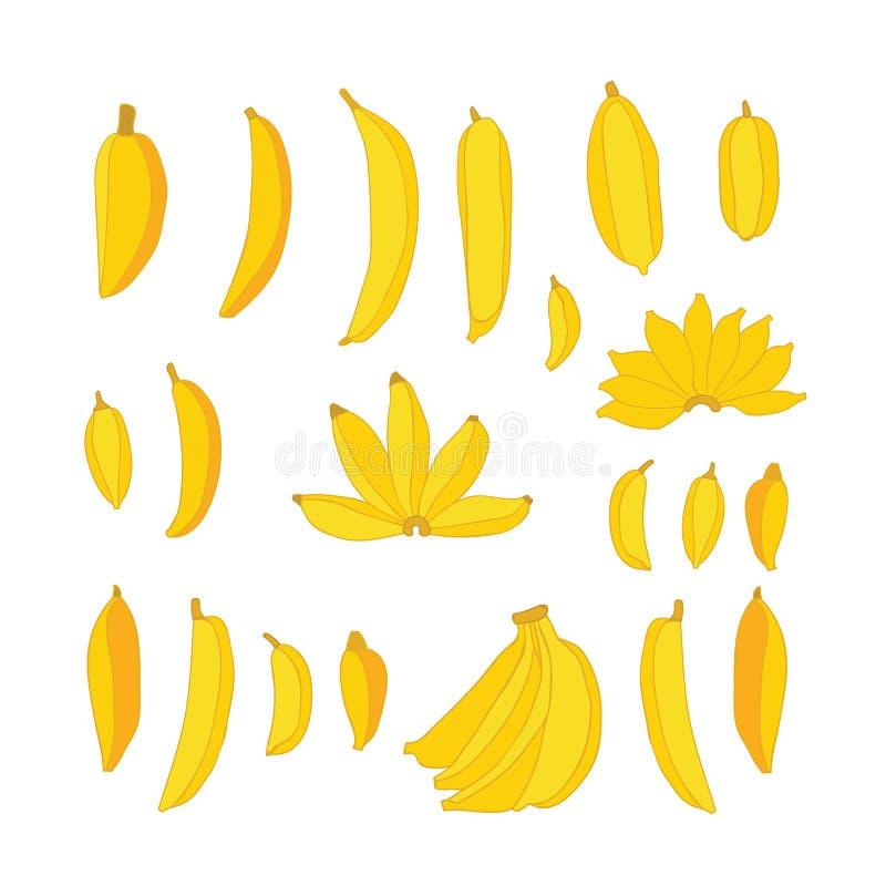 Bananes jaunes de nourriture tirée par la main délicieuse réglées d'isolement sur le fond blanc illustration stock