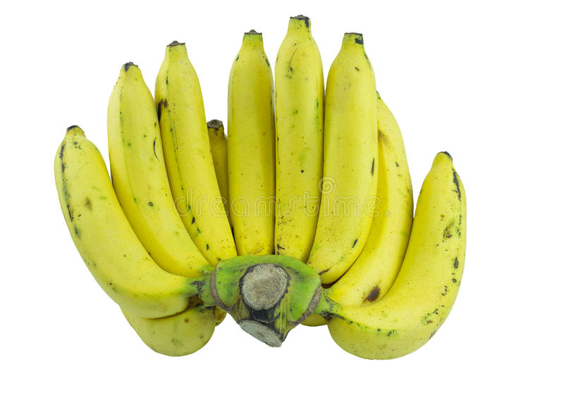 Bananes mûres photo stock