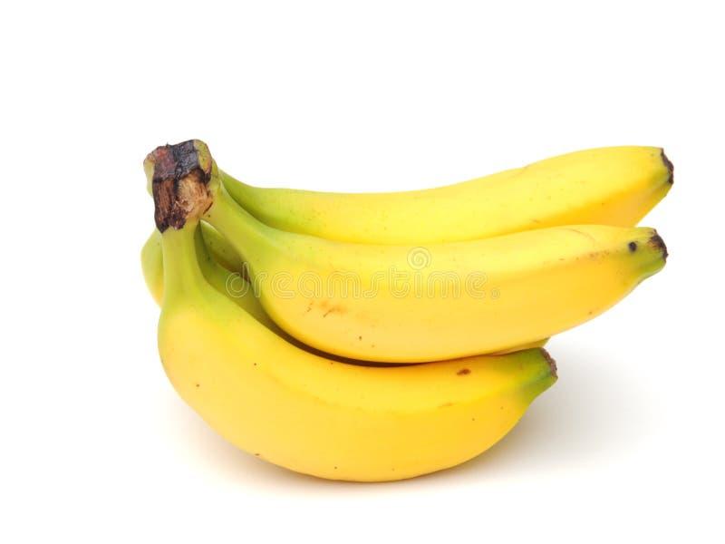 Bananes organiques photographie stock libre de droits