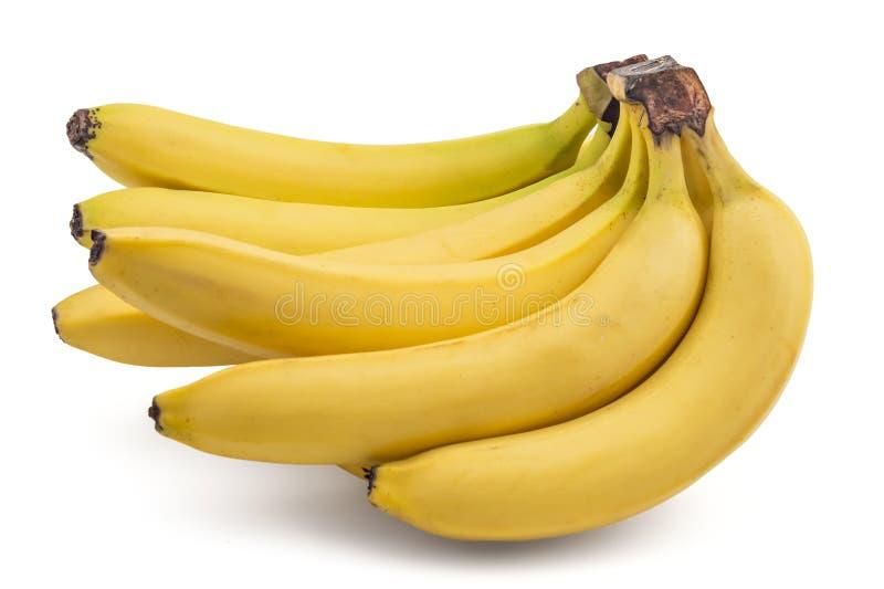 Bananes organiques crues images libres de droits