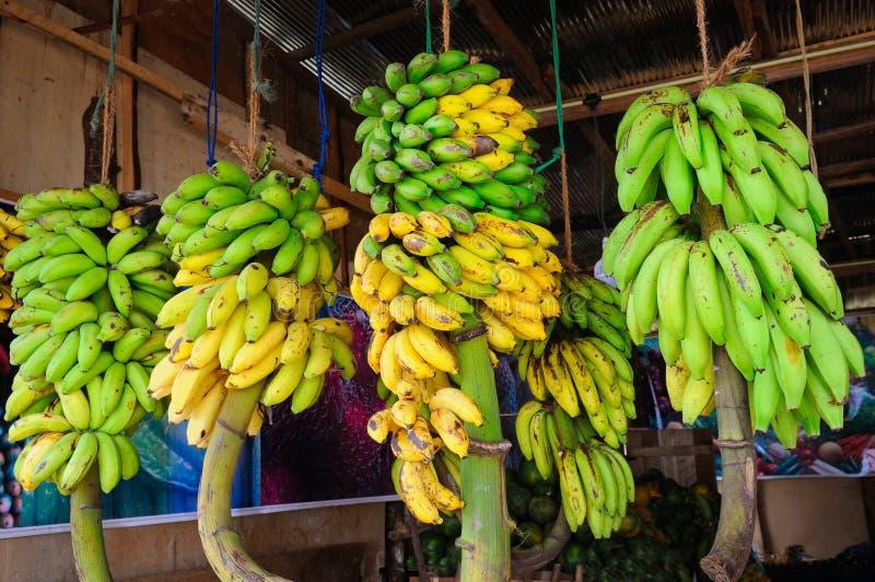Banangrupp i fruktaffär på Sri Lanka royaltyfria foton