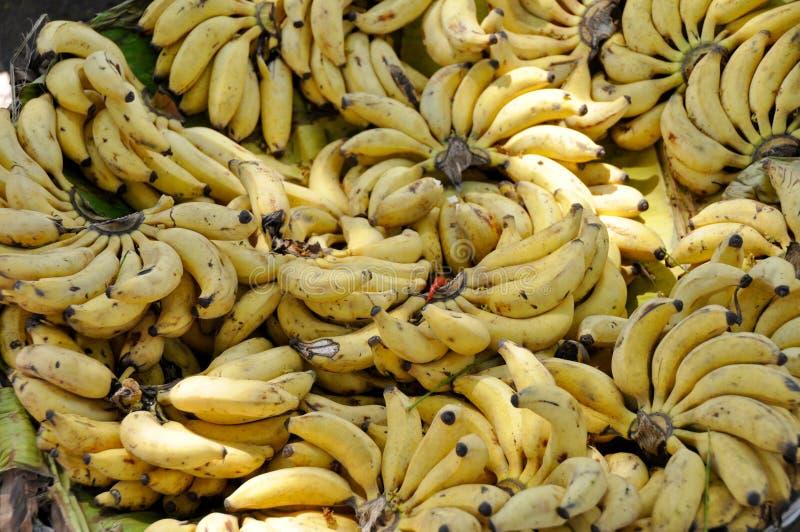 Banangrupper i en gata marknadsför royaltyfri bild