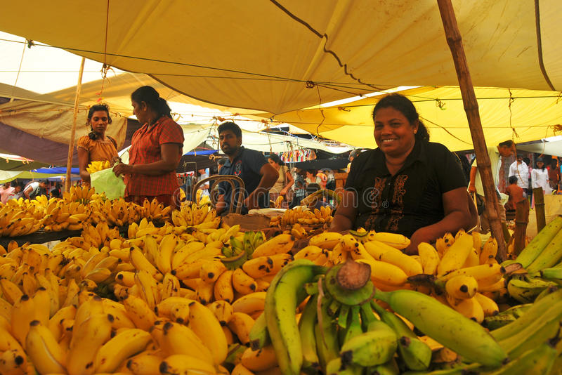 bananlankamarknaden shoppar sritangallayellow royaltyfri foto