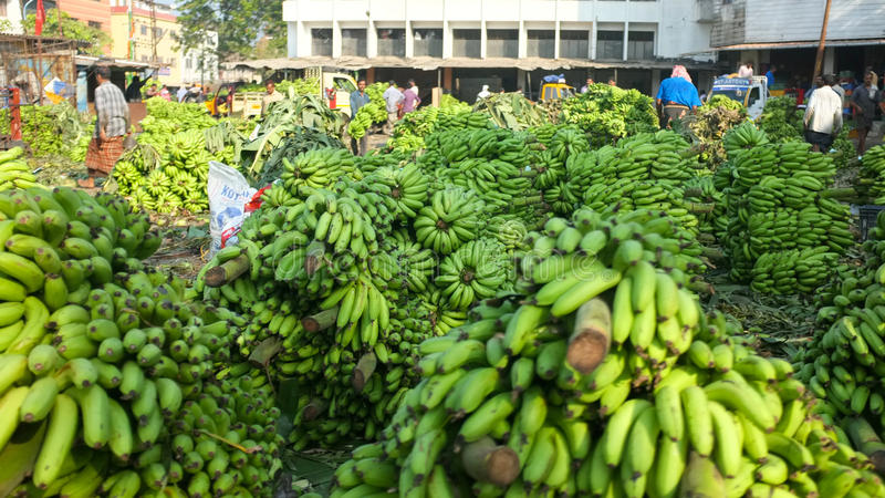Bananmarknad i Kochi, Indien arkivfoton